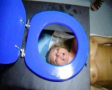 Extreme And Perverted Toilet Seat Excesses!